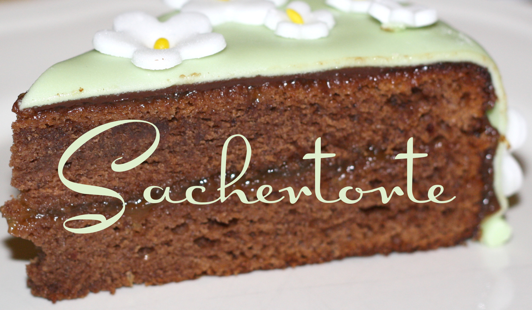 Mr. Grumpy's favourite Sachertorte