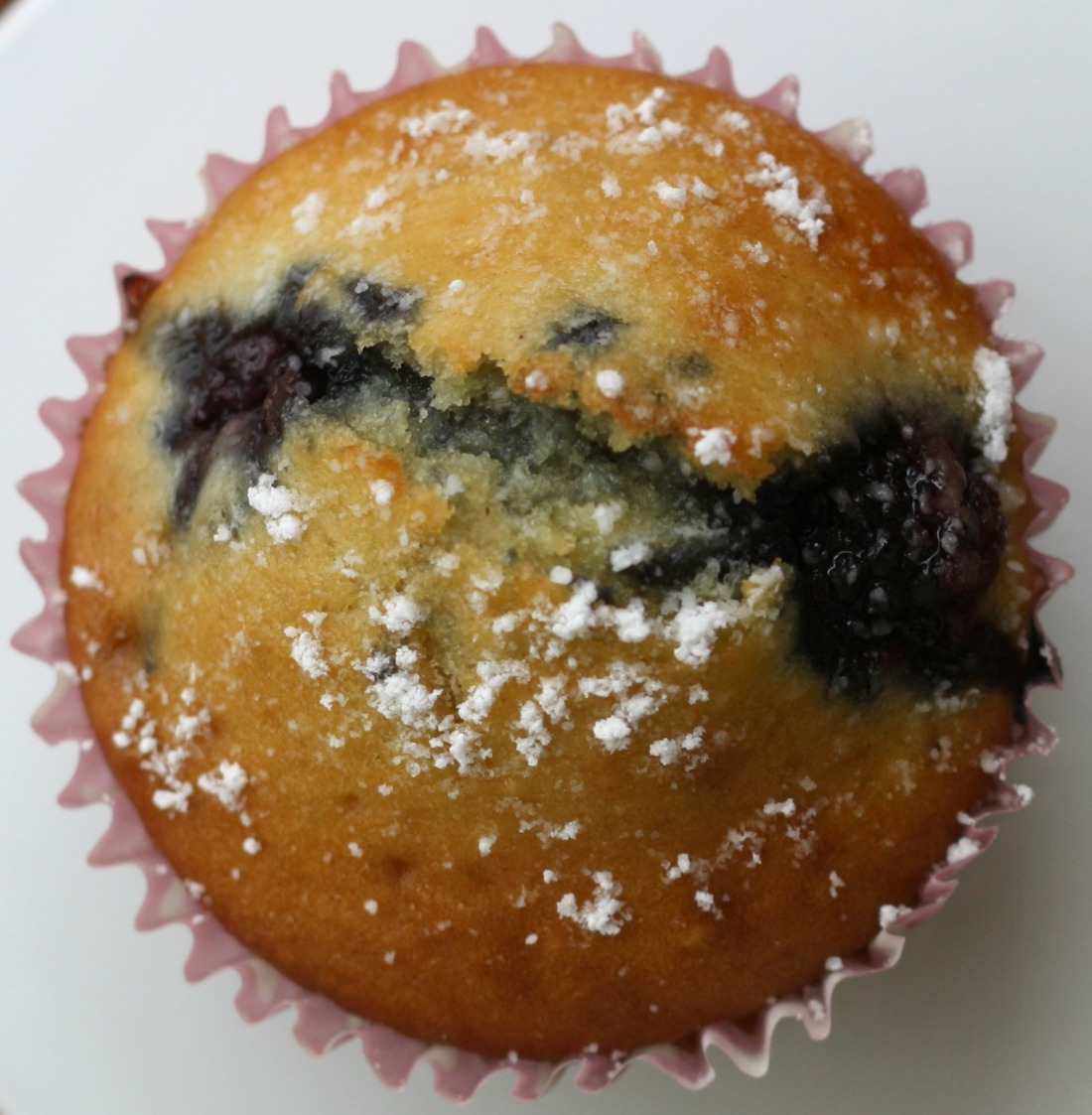 Brombeer Muffins