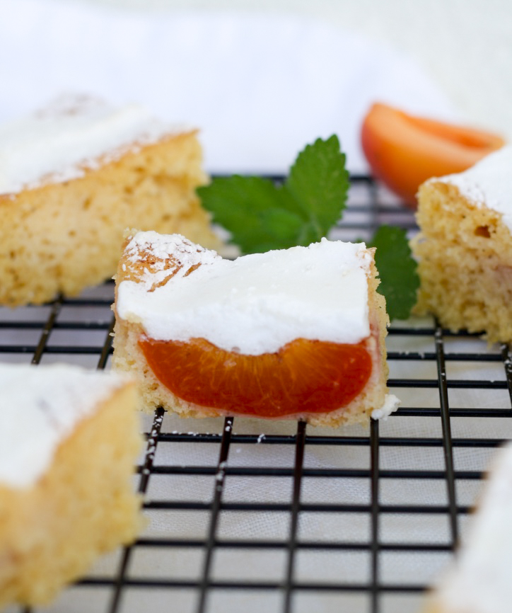 Marillenkuchen mit Baiser - Schladminger Kuchen