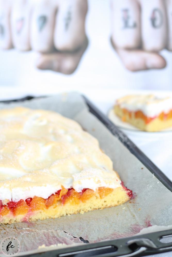 Schladminger Kuchen Marille Ribisel Kuchen mit Baiser-14